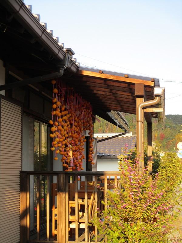小島館風景09